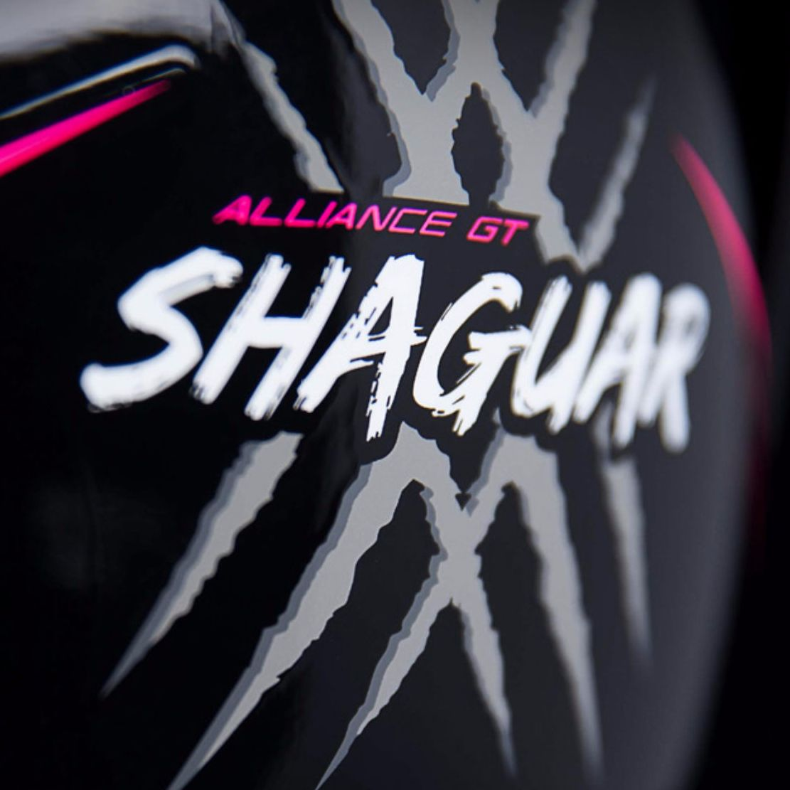 Casque Icon ALLIANCE GT - SHAGUAR